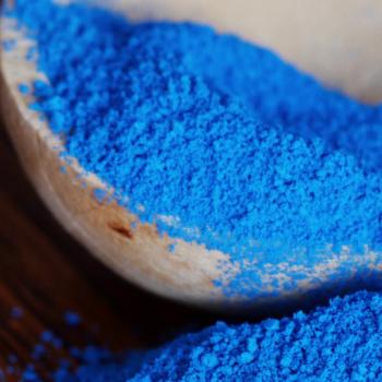 Spirulina Albastră – o algă impresionantă